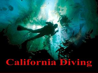 california scuba diving liveaboard trips